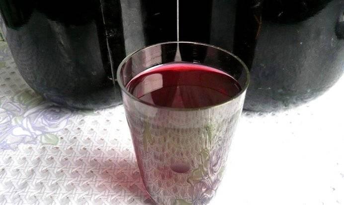 Настойка из черноплодной рябины: 4 простых рецепта в домашних условиях