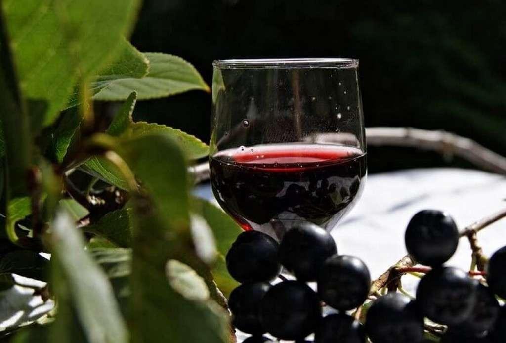 Как приготовить ликер из черноплодной рябины в домашних условиях
