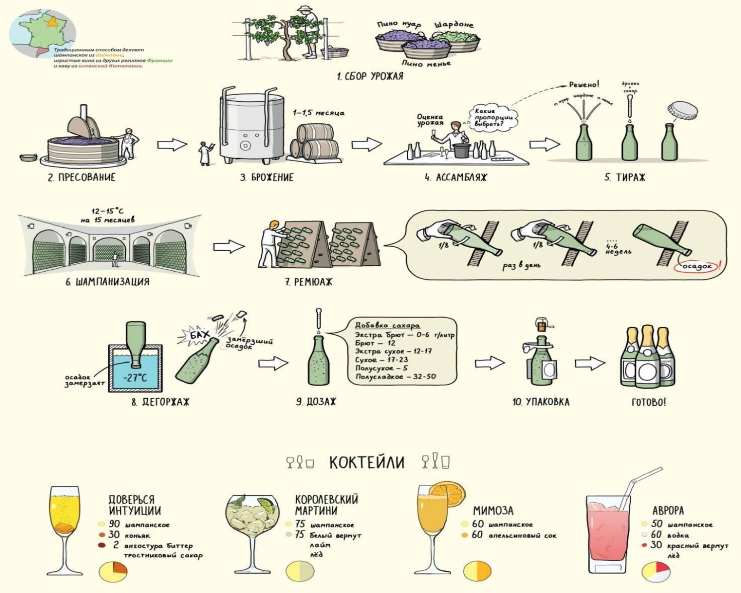 Организуем собственный винзавод: виноделия в промышленных масштабах