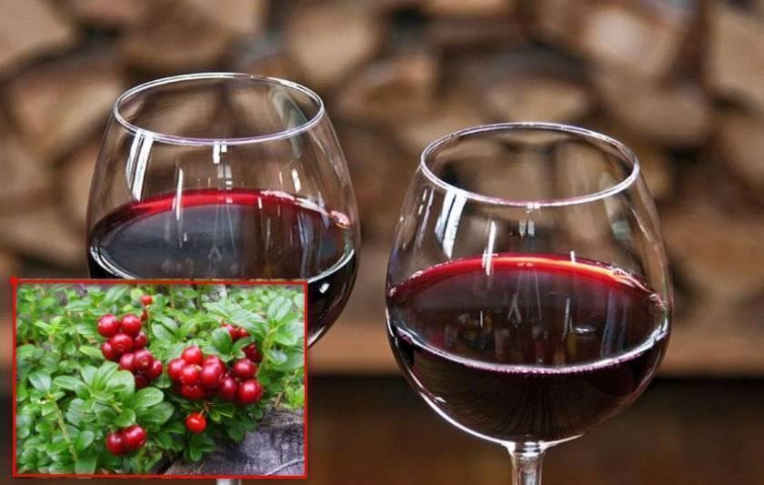 15 рецептов клюквы (настойки, водка, спирт, морс и др.) приготовленные в домашних условиях, а также как правильно заморозить ее и сохранить
