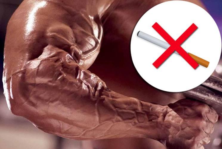 Когда вреднее курить — перед тренировкой или после? и еще 9вопросов о курении   ⭐️ maximonline ⭐️