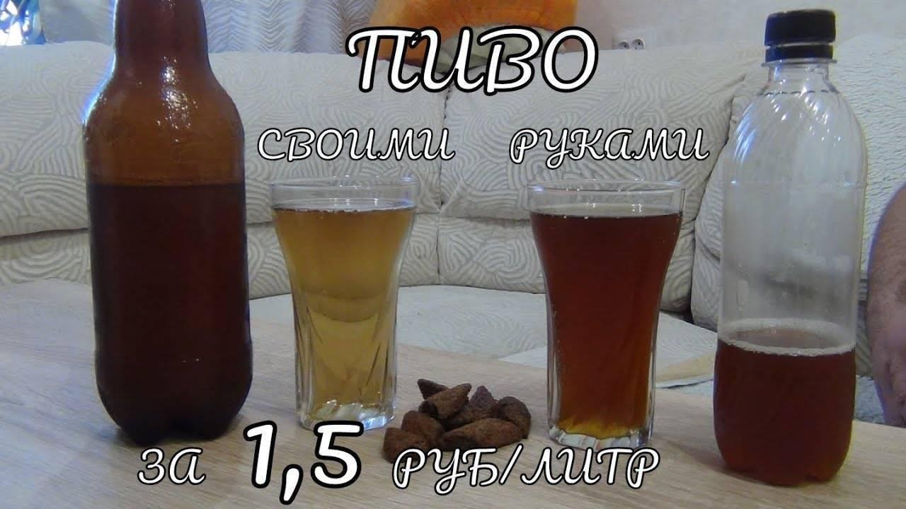 Домашнее пиво своими руками: простые рецепты