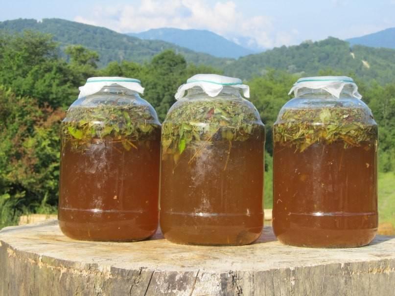 Как приготовить медовое пиво в домашних условиях?