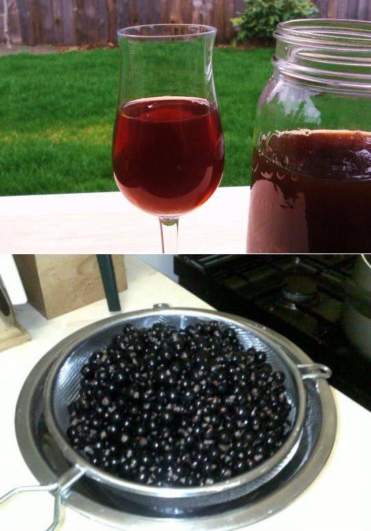 Как сделать вино из крыжовника и красной смородины