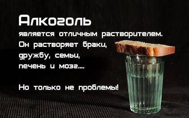 Прикольные фразы про алкоголь