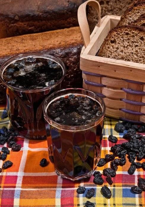 Как приготовить квас из берёзового сока с изюмом и сахаром: рецепты в домашних условиях