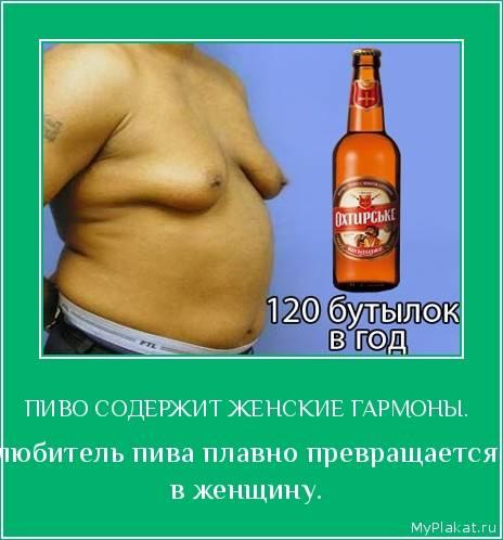Можно ли поправиться от пива