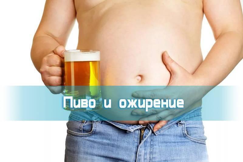 Можно ли поправиться от пива? - шаг к здоровью