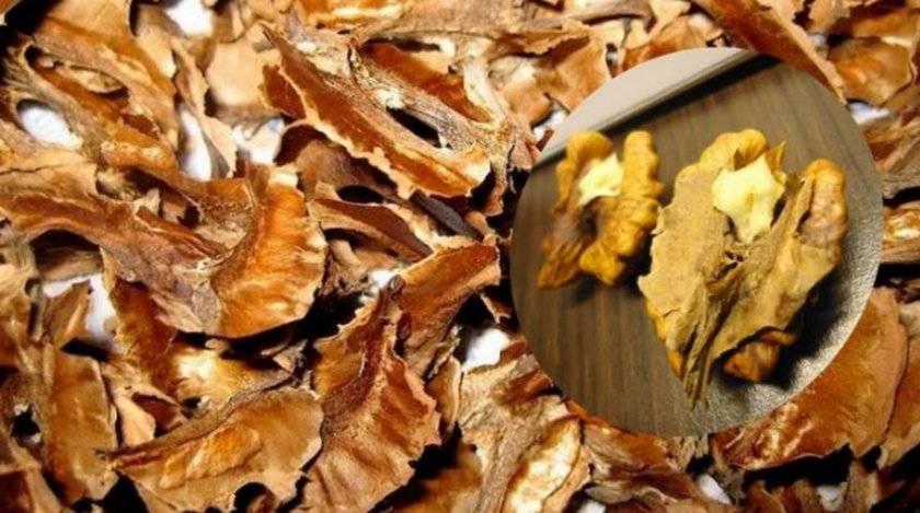 Польза перегородок грецкого ореха, лечебные свойства, настойка