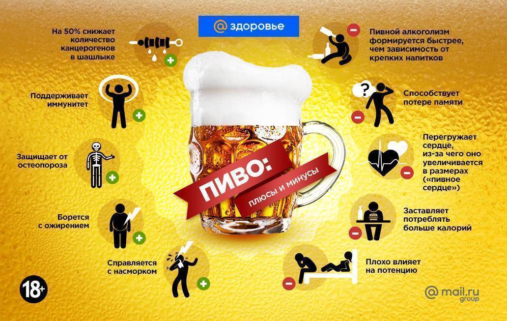 Чем заменить пиво по вечерам и почему его хочется: чего не хватает