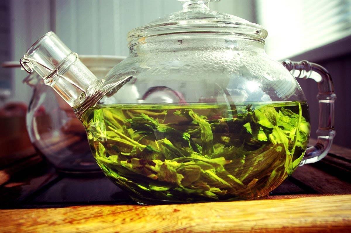 Чай от похмелья сладкий с лимоном - зеленый или черный чай от похмелья