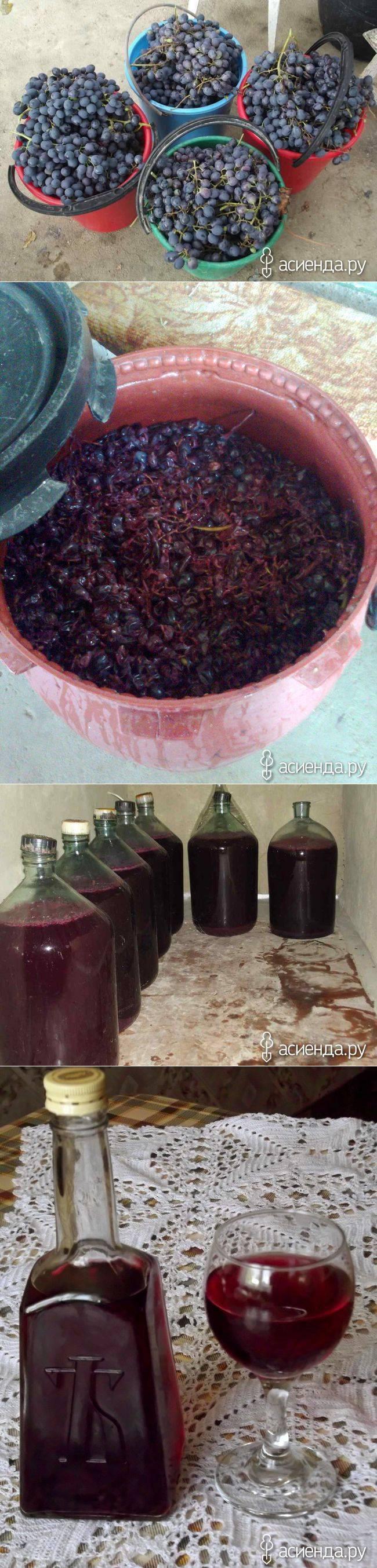 Изготовление коньяка из винограда в домашних условиях
