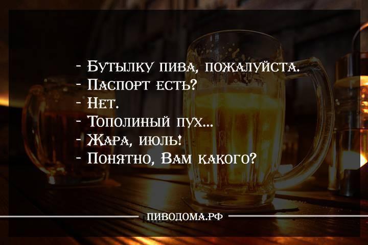 Шмяндекс.ру