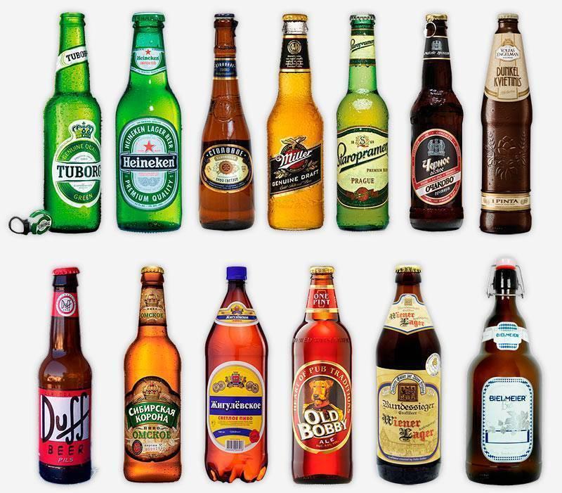Вкус пива: словарь характеристик — pivo.by