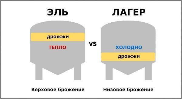 Различия между элем и лагером
