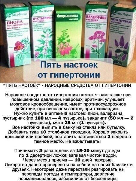 Домашние настойки на спирту – лучшие рецепты   дачная кухня (огород.ru)