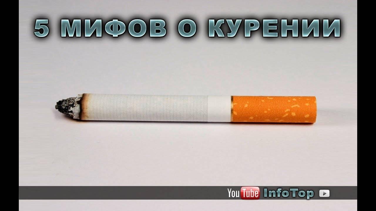 Любопытные факты о табаке и курении: рассказываем по полочкам