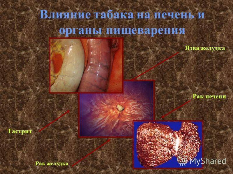 Курение сигарет на голодный желудок