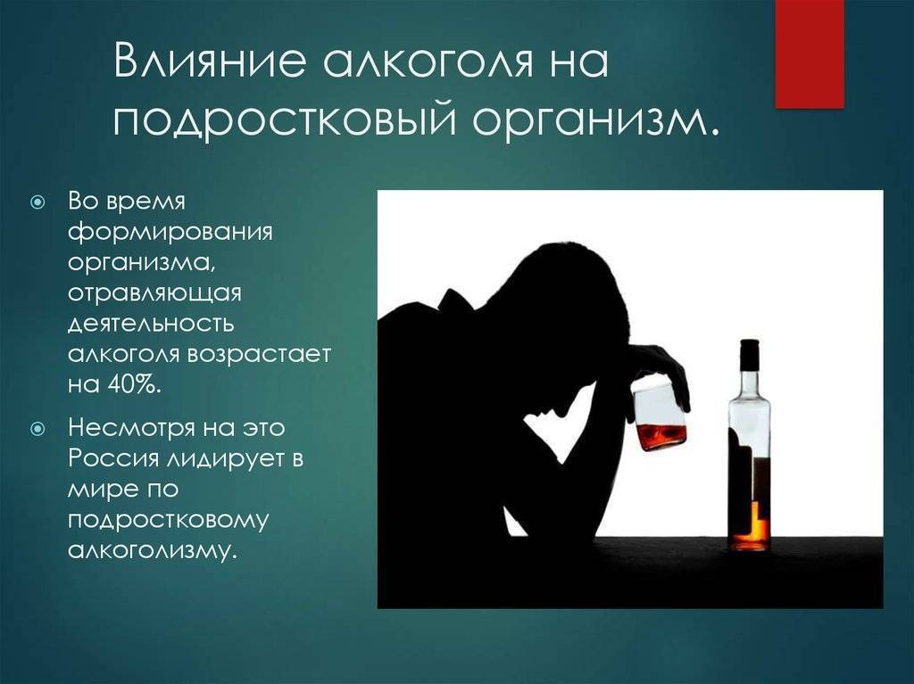 Лекции жданова о вреде алкоголя: основные принципы и основы учения
