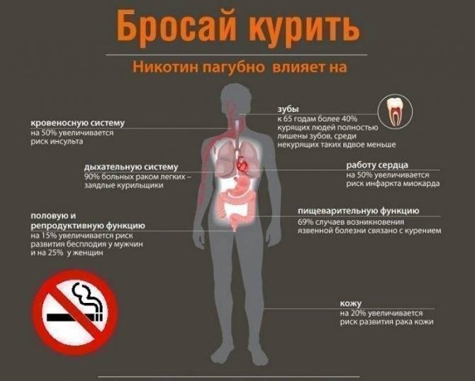 Реально ли бросить курить — стаж 10, 20, 30, 40 лет? как психологически, безболезненно бросить курить: способы, советы, отзывы. как лучше бросать курить — сразу или постепенно?