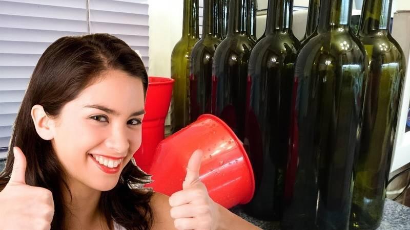 Простые способы приготовления домашнего вина