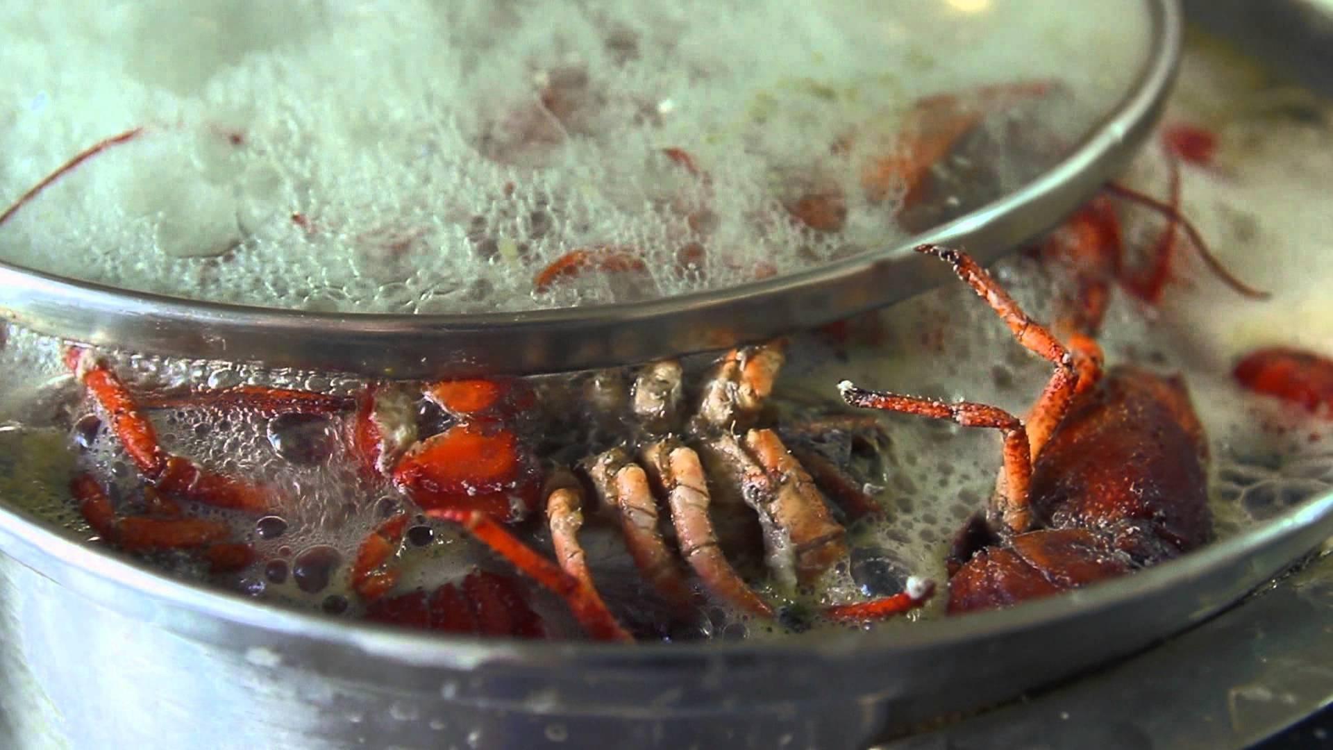 Как вкусно сварить раков к пиву: лучшие рецепты, секреты приготовления - truehunter.ru