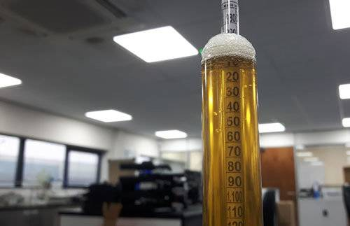 Плотность пива: что это такое