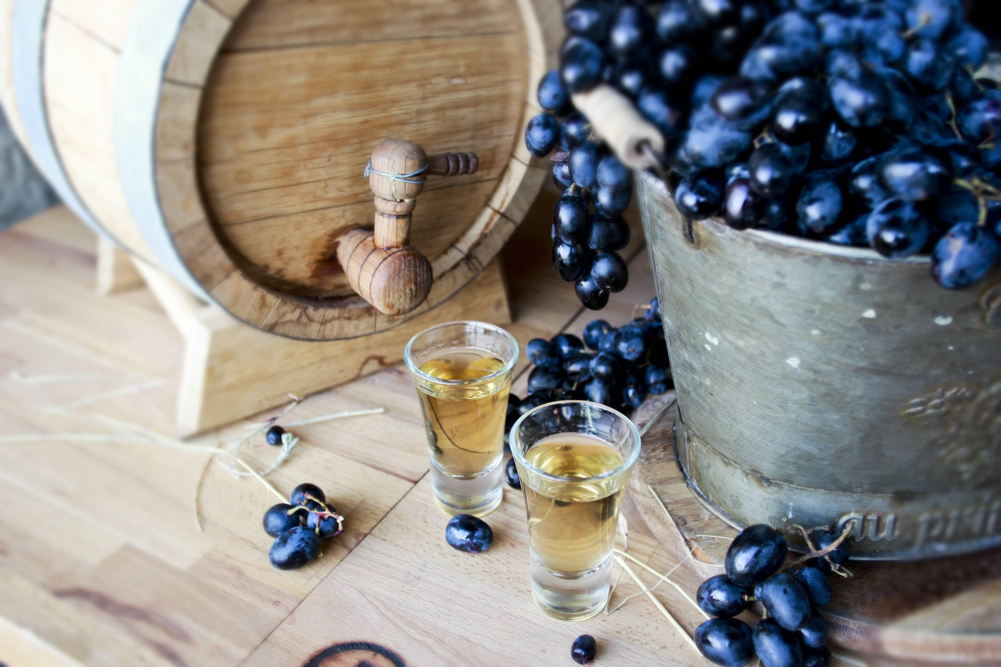 Брага из винограда для самогона: как правильно приготовить?