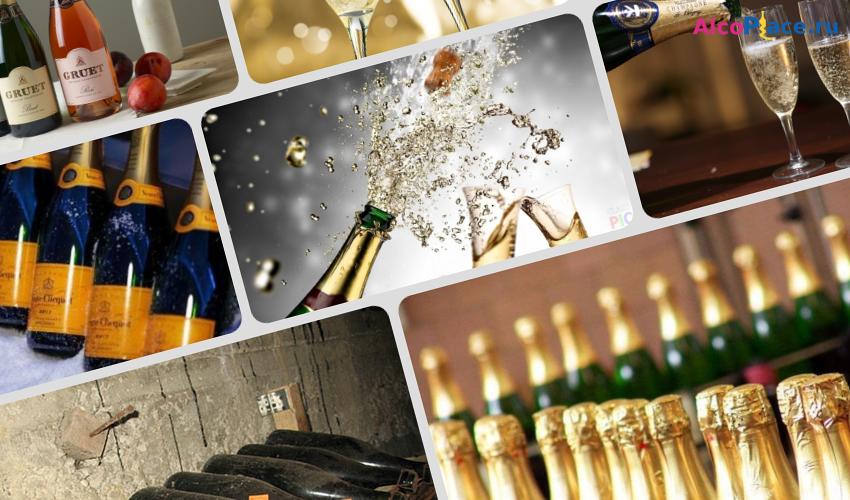Чем отличается шампанское от игристого вина и винного напитка: разница, отличия напитков
