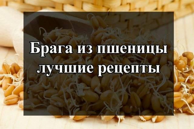 Проверенный рецепт самогона из пшеницы