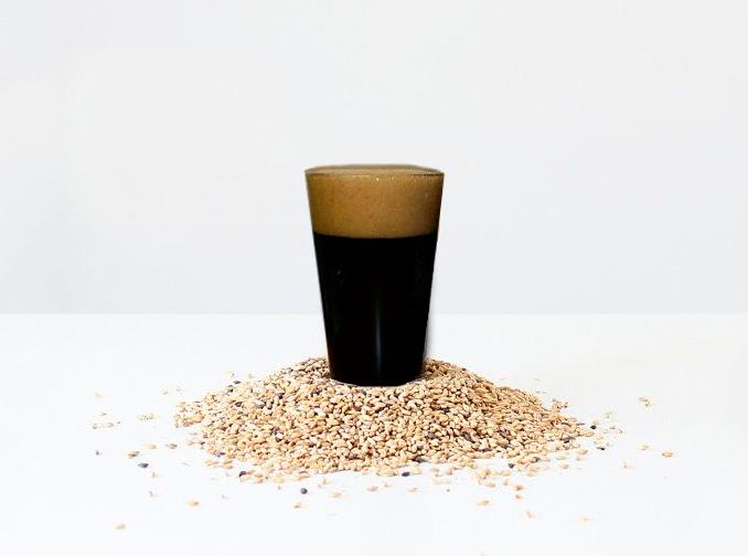 Стаут - приготовление пива в домашних условиях – как правильно пить