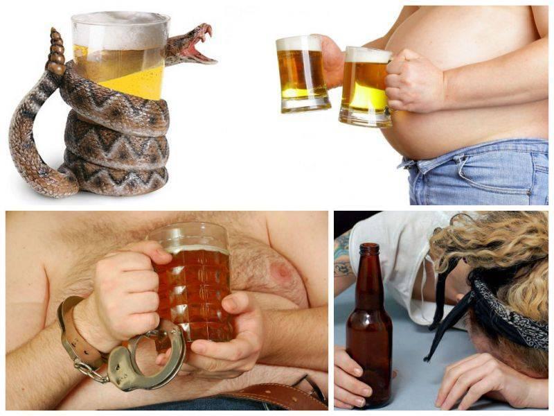 Как женщине бросить пить пиво каждый день? практические советы | bezprivychek.ru