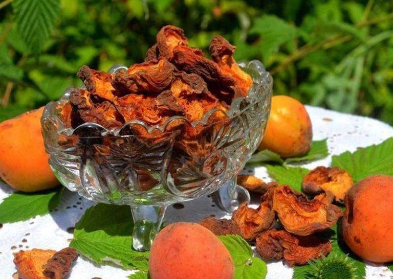 Еще больше алкоголя из абрикосов! готовим абрикосовый ликер в домашних условиях
