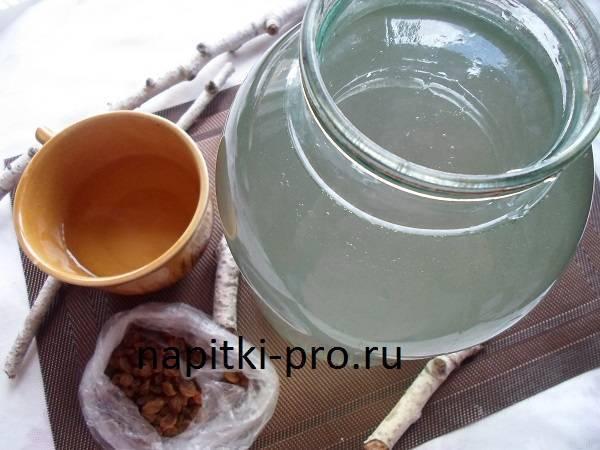 Квас из березового сока. как приготовить напиток в домашних условиях?