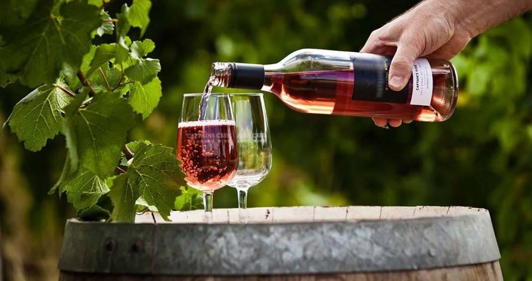 Что такое «биовино» и биологическое производство винограда