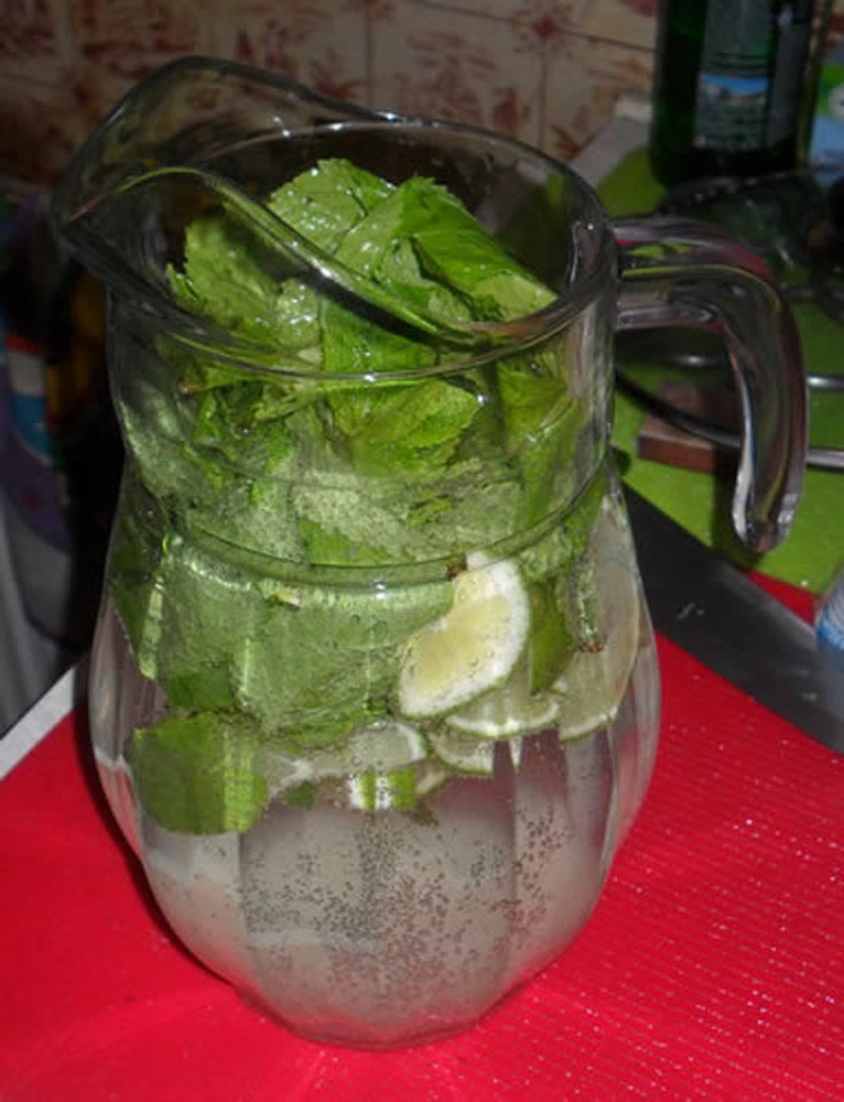 Как сделать алкогольный и безалкогольный мохито, 60 рецептов скачать бесплатно