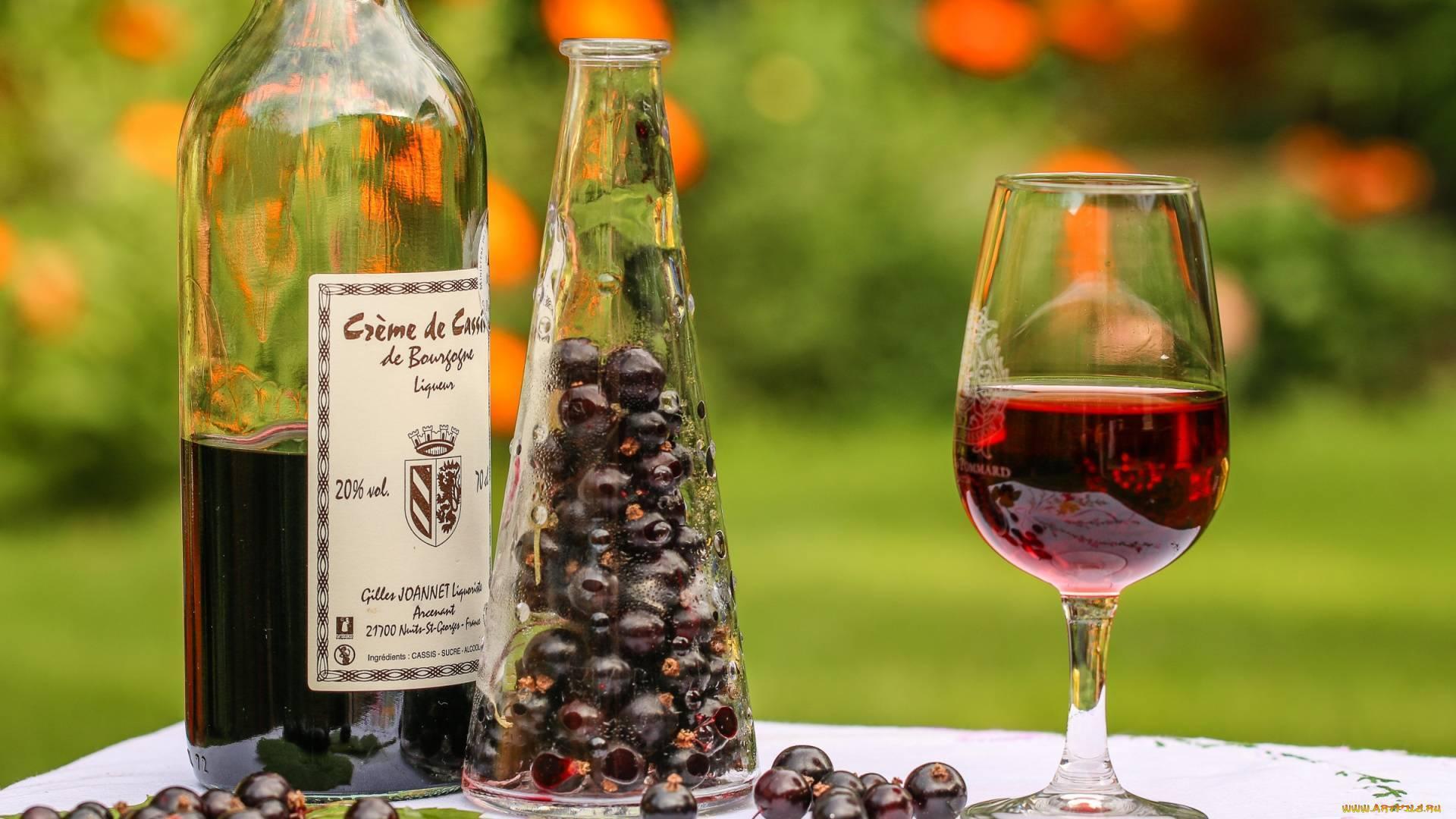 Вино из ежевики в домашних условиях простойрецепт - скороспел
