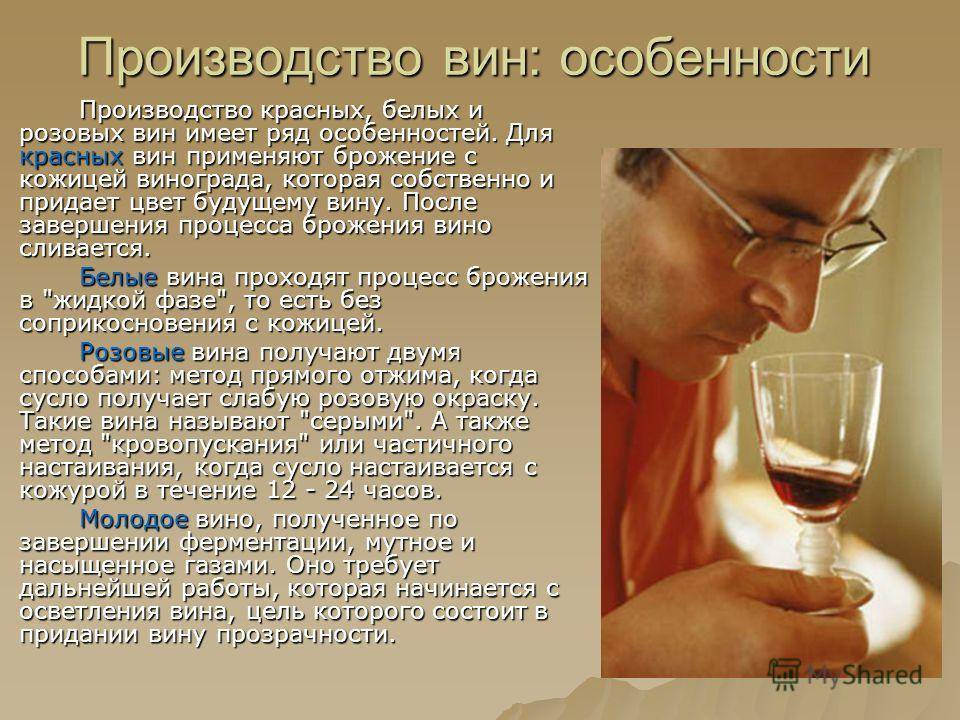 Полезно ли белое вино?