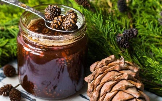 Кедровка – настойка на кедровых орешках
