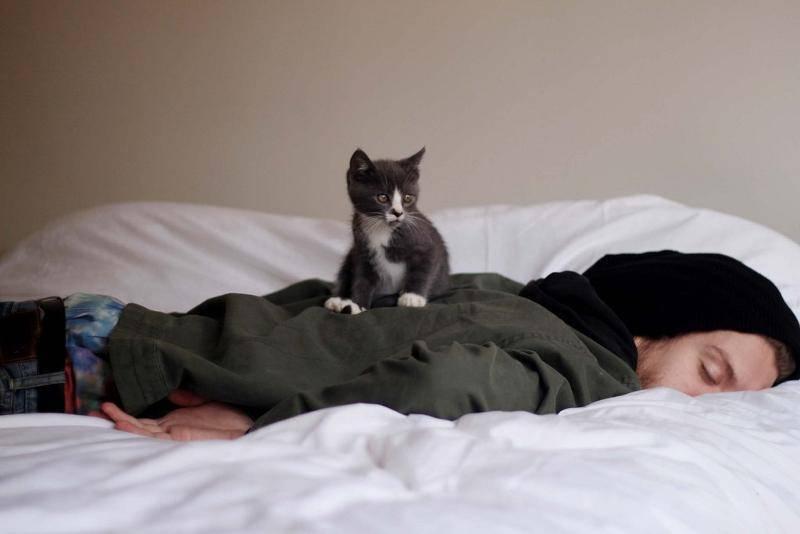 Как усыпить человека на расстоянии. что делать, чтобы уложить спать пьяного