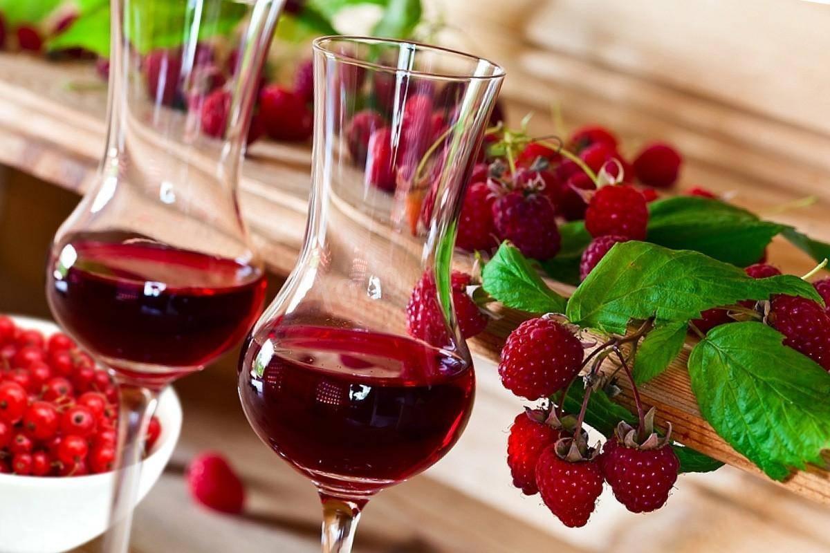 Вино из белой смородины — простые и необычные рецепты