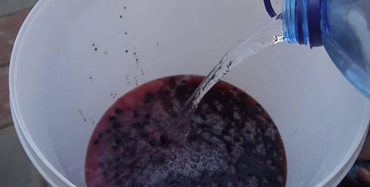 Вино из черной смородины в домашних условиях: рецепт с фото пошагово