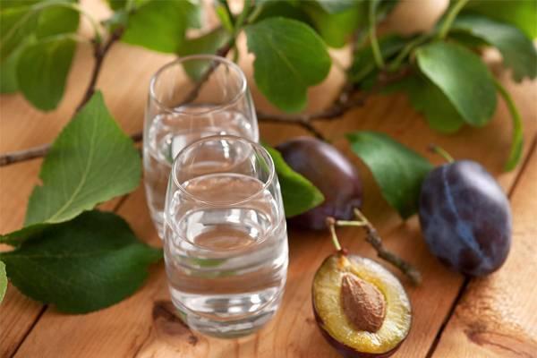 Шнапс: что это, виды, градус, как пить, рецепт | koktejli.ru
