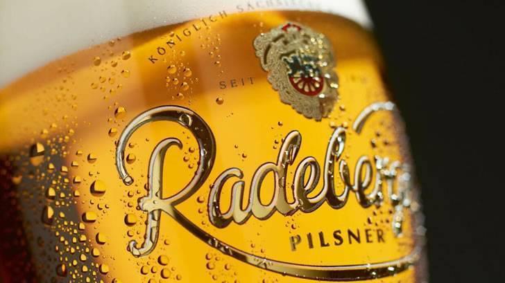 Пиво radeberger: история, особенности, как и с чем пить + как отличить подделку