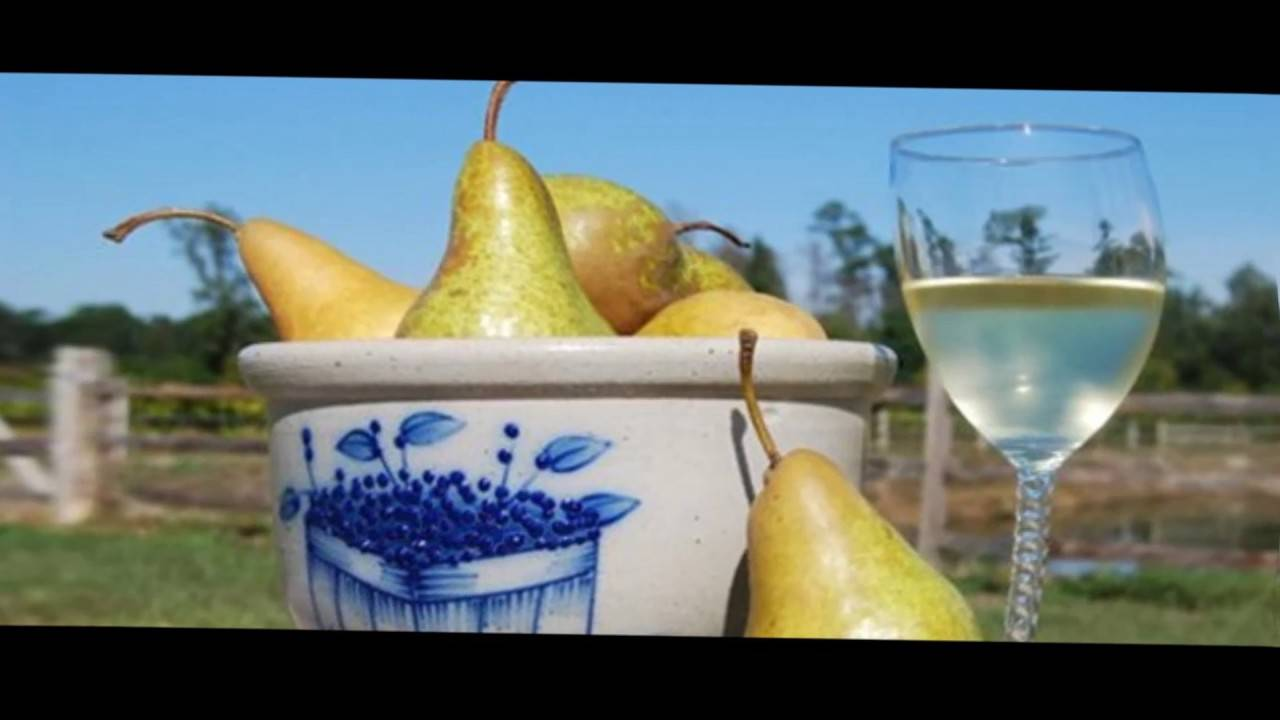 Вино из груши в домашних условиях с фото и видео