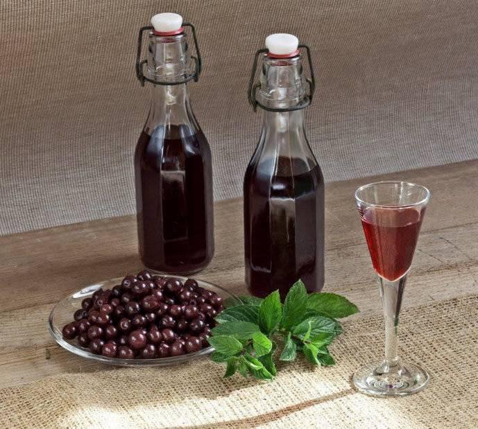 Вино в домашних условиях простой рецепт из калины