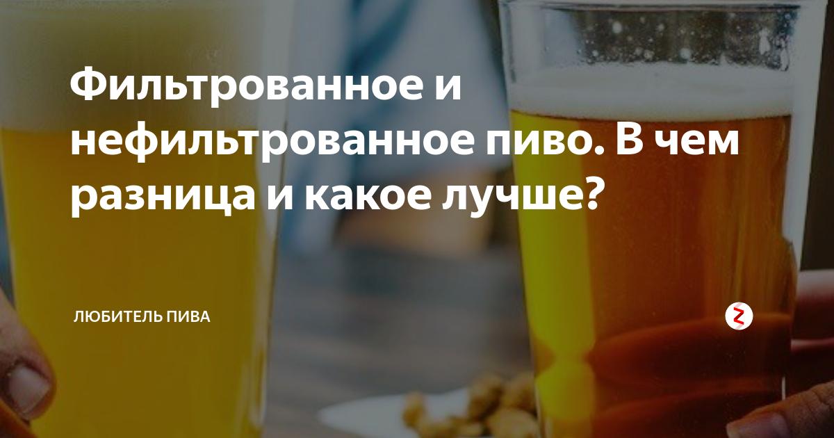Нефильтрованное пиво: свойства и отличия от фильтрованного
