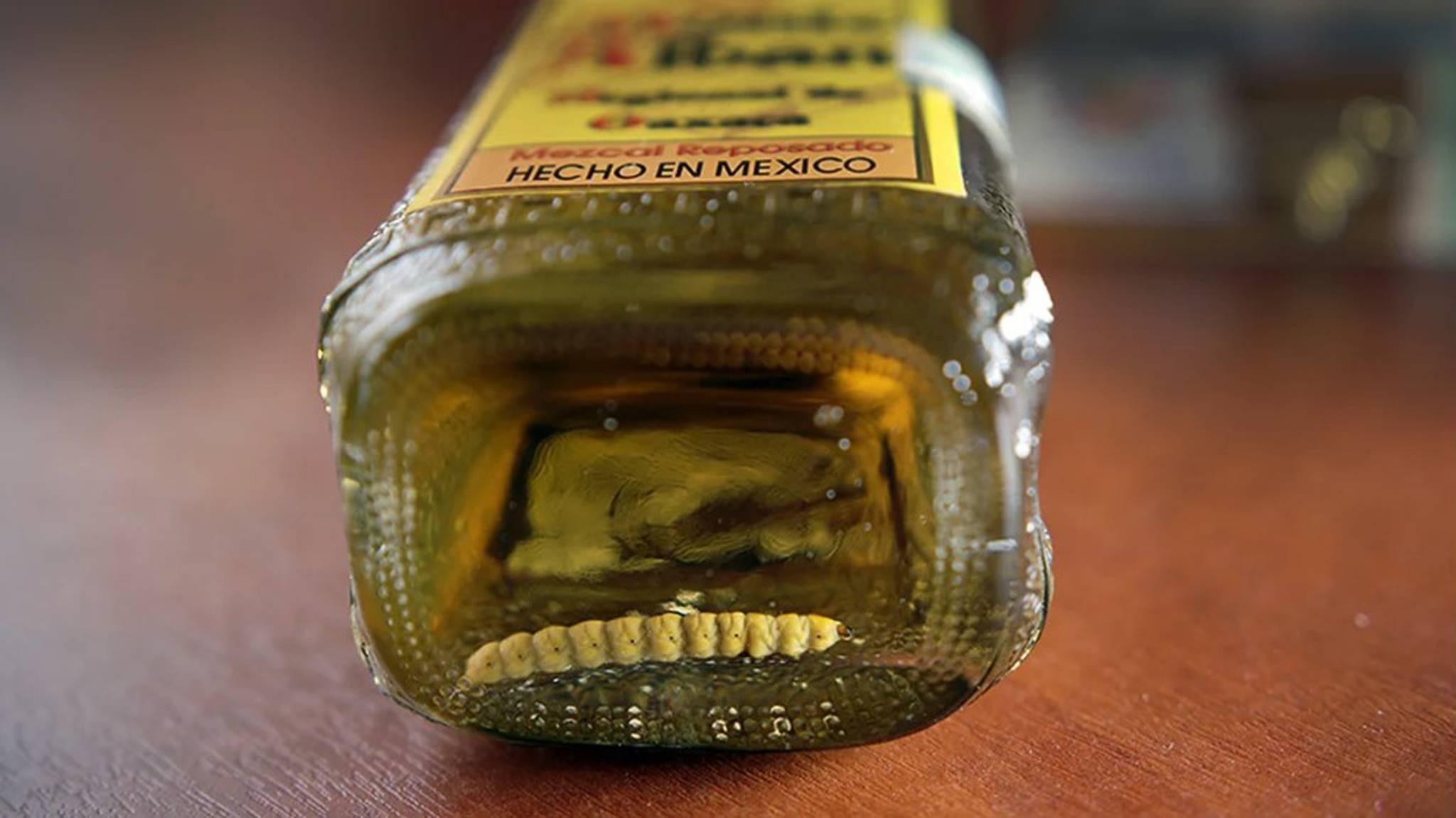 Текила мескаль мексиканские напитки - лучшие рецепты от gemrestoran.ru