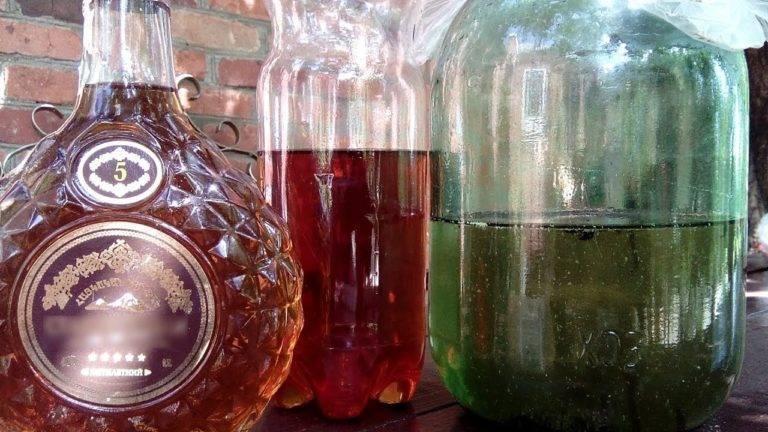 Французский коньяк, сорта винограда для коньяка, процессы технологии производства французского напитка