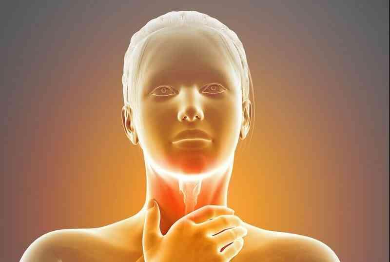От дыни болит горло: в чем проблема?